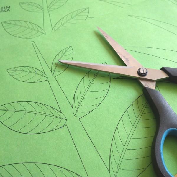 pdf soubor k vytištění dekorace oken stonek květu
